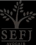 sefj-avocats-logo-b2